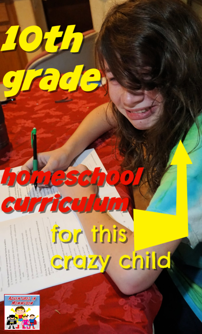 10th grade homeschool curriculum for independent learning