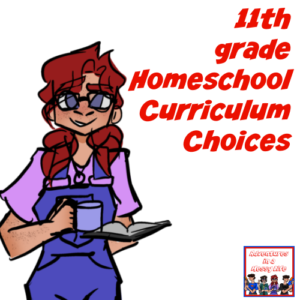 11th grade homeschool curriculum choices for the group