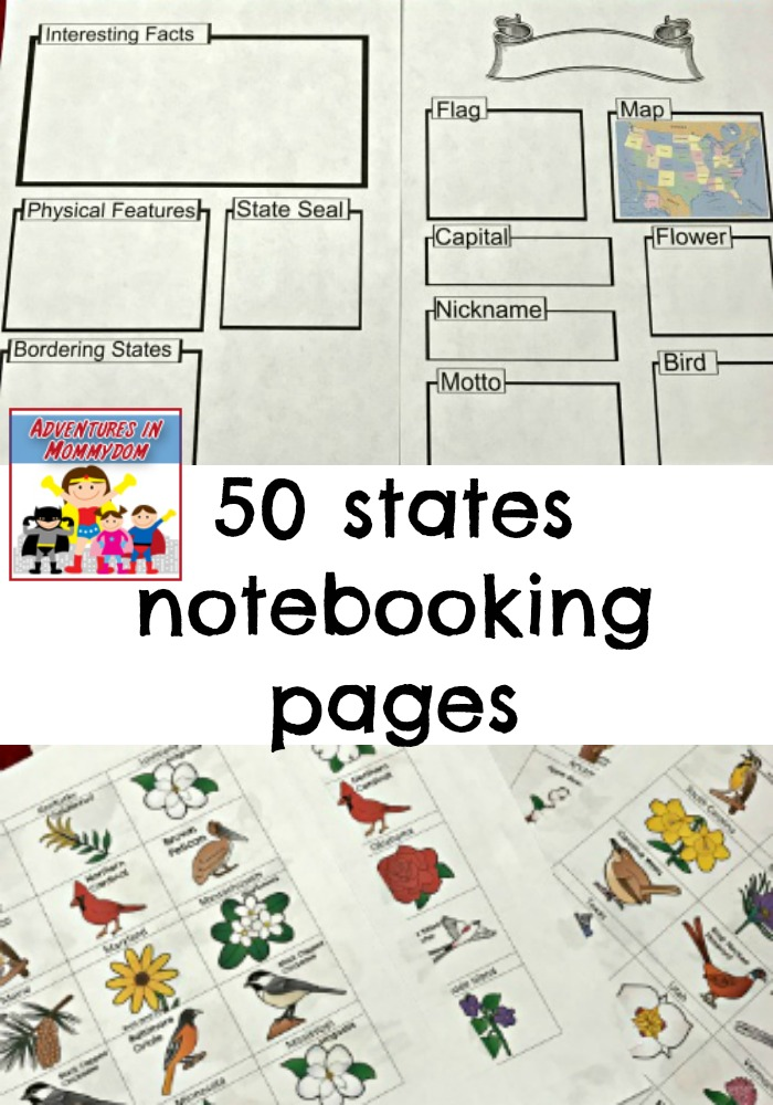50 united states notebooking pages