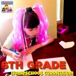 6th grade homeschool curriculum for crazy kids