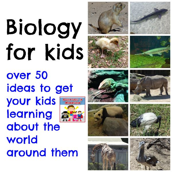 Biology for kids, over 50 ideas to get your kids learning about the world around them