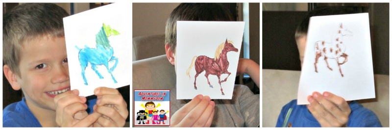 Chincoteague ponies activity