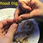 Cookie fossil dig for elementary