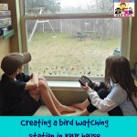 creating a bird watching station in your house