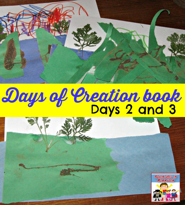 Creation story book