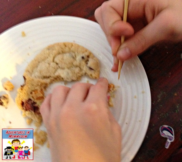 Dinosaur cookie fossil dig