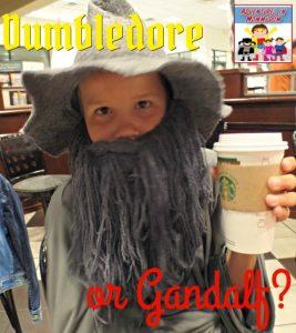 Dumbledore costume or Gandalf costume