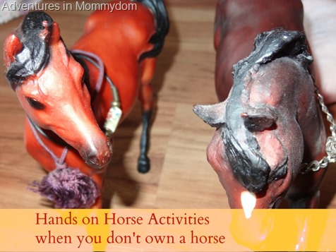 Hands-on-horse-activities-when-you-dont-own-a-horse.jpg