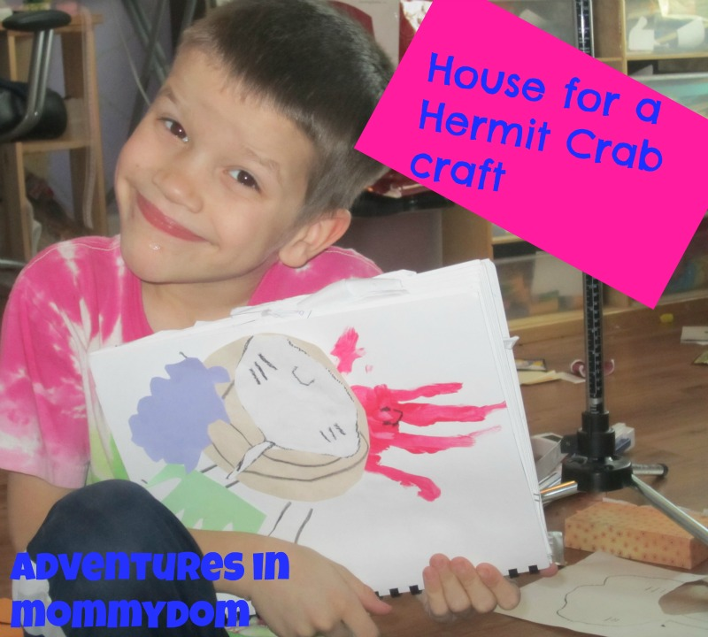 House for a hermit crab craft