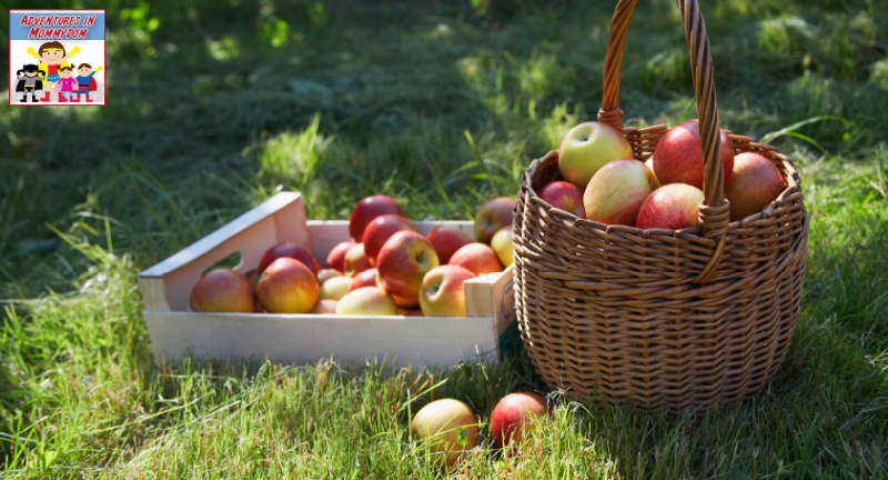 Johnny Appleseed lesson