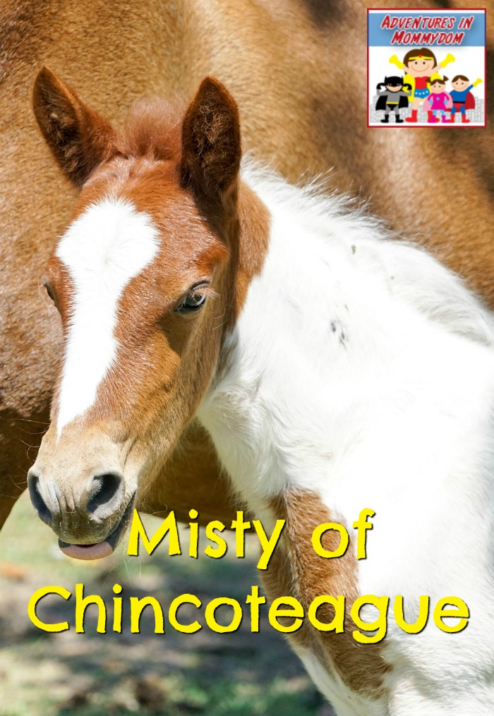 Misty of Chincoteague book and a movie night