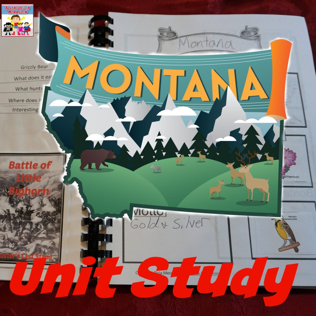 Montana unit study for elementary and middle school