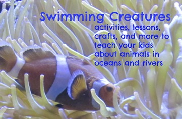 swimming creatures
