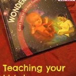Teaching your kids how a baby grows with Wonderfully Made