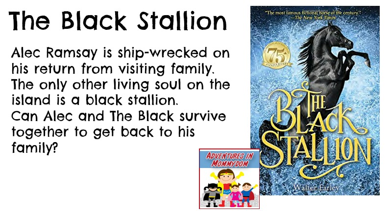 The Black Stallion synopsis