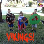 Vikings lessons