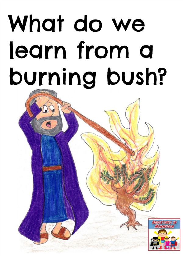 What do we learn from a burning bush