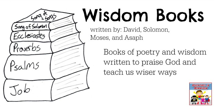 the five main books of wisdom in the bible The book of wisdom the book of wisdom was written about fifty years before the coming of christ its author, whose name is not known to us, was probably a member of the jewish community at alexandria, in egypt.