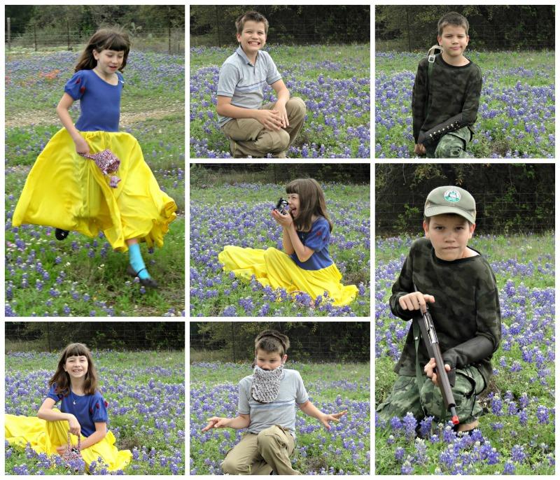 bluebonnet collage