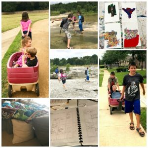 June 2017 Homeschooling Month in Review, how am I surviving?