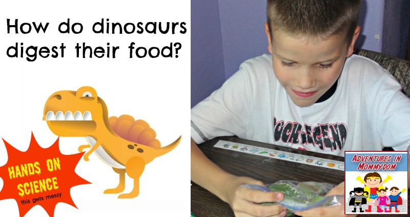 how do dinosaurs digest their food hands on science for kids