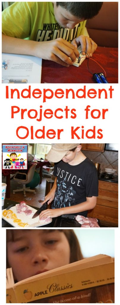 independent projects for older kids