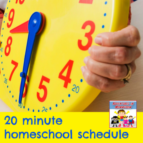 keep your life sane with this 20 minute homeschool schedule