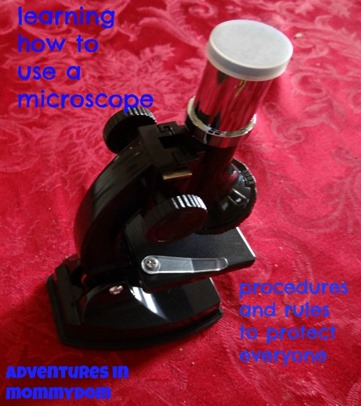 learning how to use a microscope