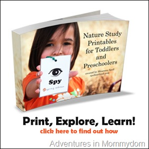 Science Sunday: Nature Study for Preschoolers