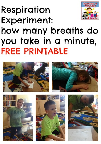 respiration experiment with free printable