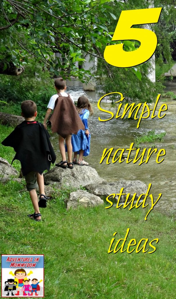 simple nature study ideas for kids