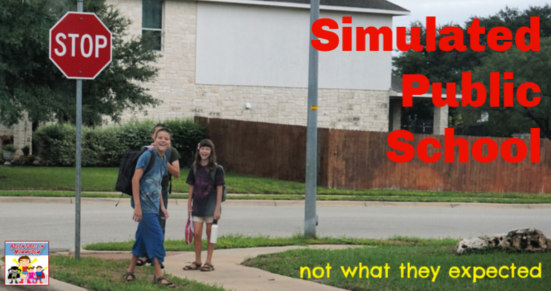 simulated public school not what they expected