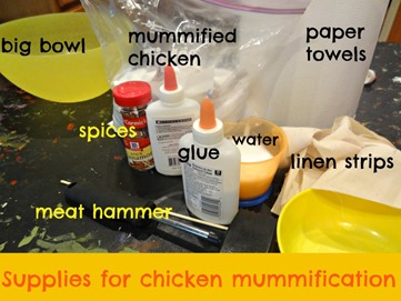 supplies for chicken mummy