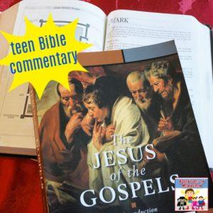 teen Bible commentary Jesus of the gospels