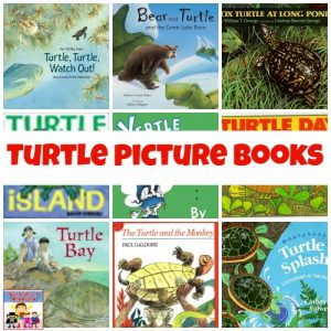 turtle picture books booklist