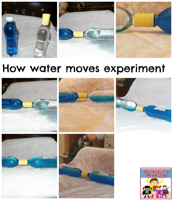warm-water-to-cold-water-experiment