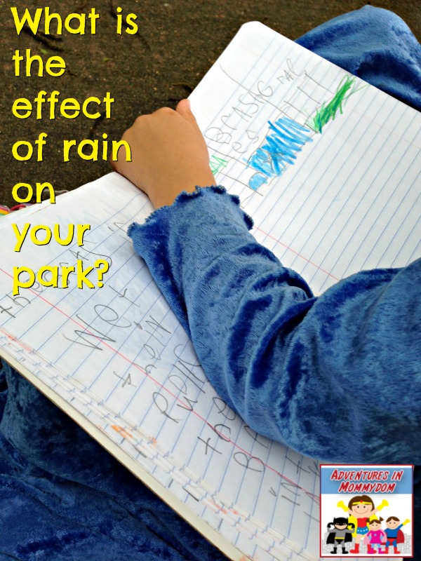 what is the effect of rain on your park nature study