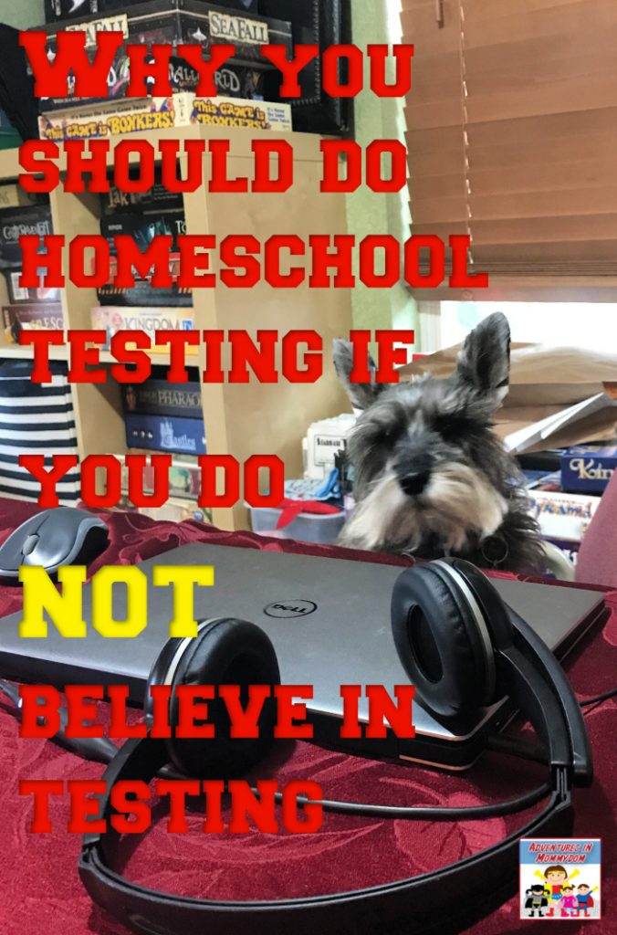 why do online homeschool testing when you don't believe it