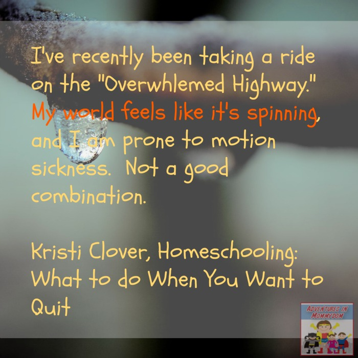 quitting homeschooling, world is spinning